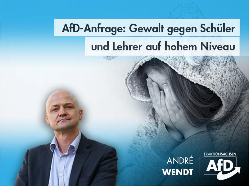 AfD-Anfrage: Gewalt gegen Schüler und Lehrer auf hohem Niveau