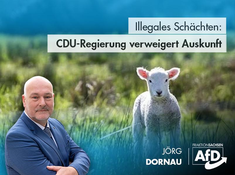 Illegale Schächtungen: CDU-Regierung verweigert Auskunft