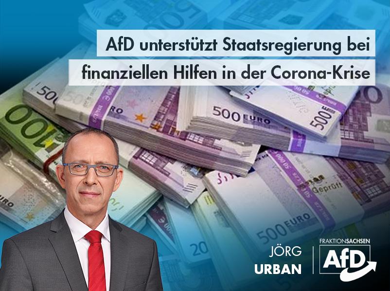 AfD unterstützt Staatsregierung bei finanziellen Corona-Hilfen
