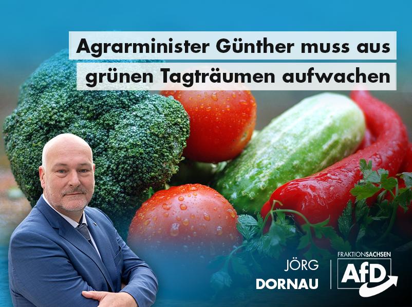Agrarminister Günther muss aus grünen Tagträumen aufwachen